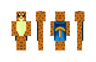 Minecraft skin h0us3cat